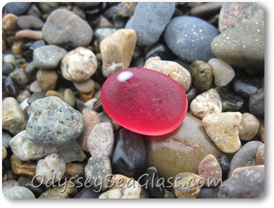 RED! This perfect, raspberry and white sea glass gem certainly was the catch of the day. I, David, saw it a split second ahead of Lin, so get to claim it as MINE. Oh Yeah!