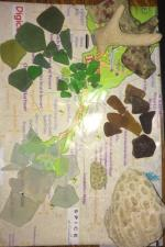Latest Sea Glass Beach Reports, Photos / Tip of the Week