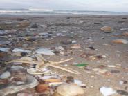 World sea glass beaches