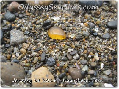 Honey amber beach glass is fairly common but really stands out when a little wet