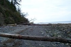 McCurdy Point starts Glass Beach