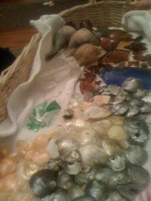 Milford, CT sea glass
