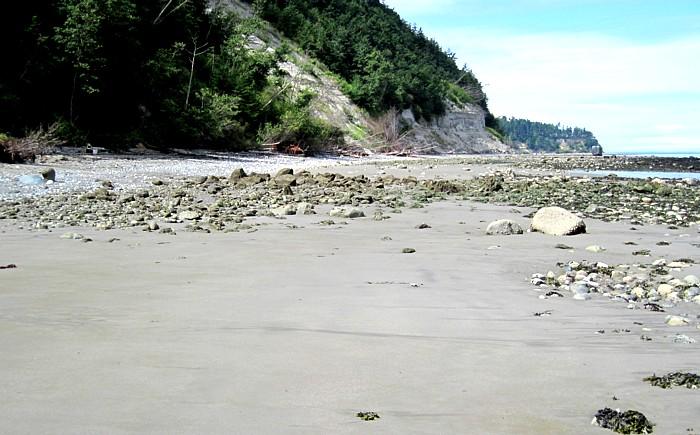 Beach Dump Sea Glass?