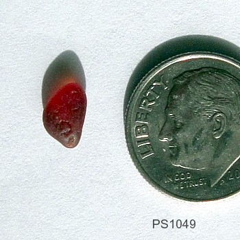 For Sale Red Sea Glass