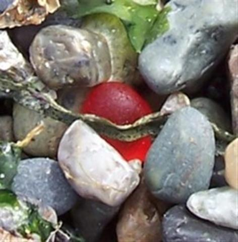 Round Red Sea Glass