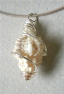 Sterling silver wire wrapped Sanibel Island shell