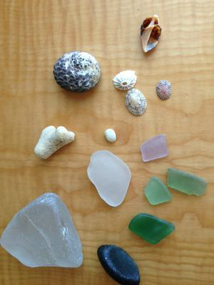 Bounty from the Sea - Old San Juan, Puerto Rico Sea Glass