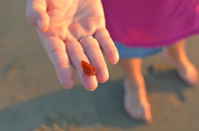 California Treasure - October 2012 Sea Glass Photo Contest