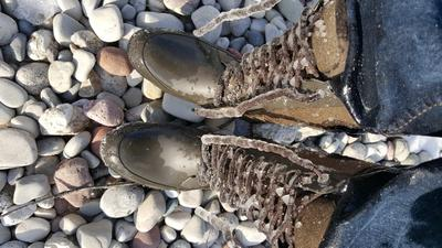 Frozen boot laces
