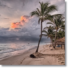 Tropical Beach Background Dominican
