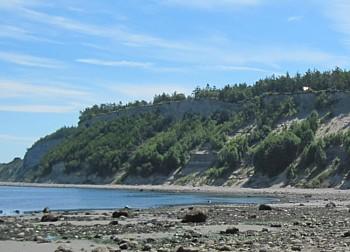 Beach dump - sea glass replenishment
