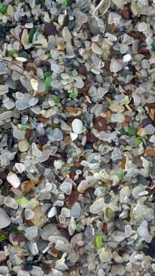 Glass on the Beach