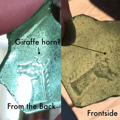 Found green glass shard with a giraffe head (?) on it off the Atlantic City New Jersey Boardwalk.