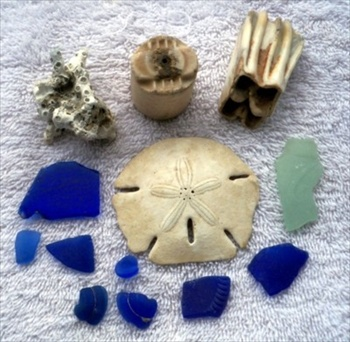 Pieces of blue sea glass, a piece of coral, ceramic insulator, teeth & piece of Coke bottle