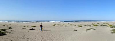 Sea Glass Long Beach? Nope.