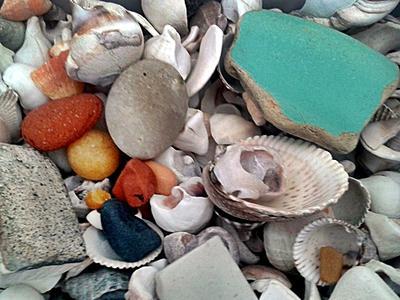 Washington State Sea Glass