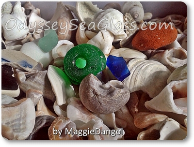 maggie_dangol_beach_finds