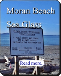 Moran Beach Whidbey Island Sea Glass