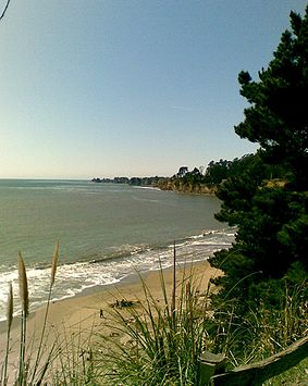 New brighton state beach santa cruz county sea glass report for Capitola fishing report