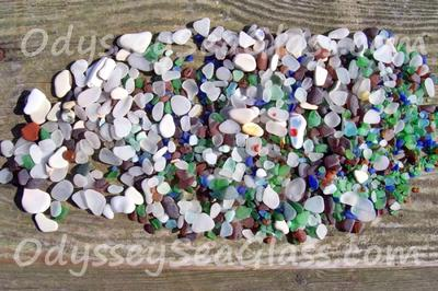 Olympic Peninsula WA Beach and Sea Glass Reports