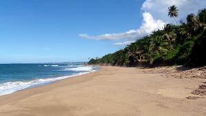Carribean Sea Glass