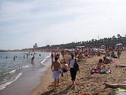 Barcelona Has 7 Beaches