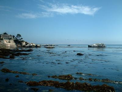 Best Shell Beaches In San Diego Ca