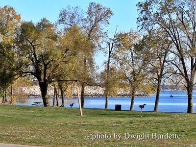 Sterling State Park Michigan Picnic Area