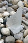 Norfolk Virginia Soda Bottle  - Sea Glass Photo Contest