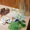 My collection from one day of collecting while snorkeling the shallow shoreline.