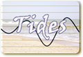 Tides for Myrtle Beach, South Carolina
