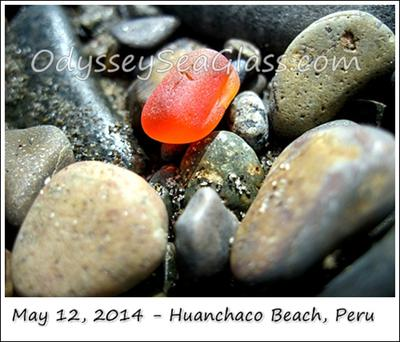 Orange! Lin found this - we've been looking steadily for 9 months, finally an orange