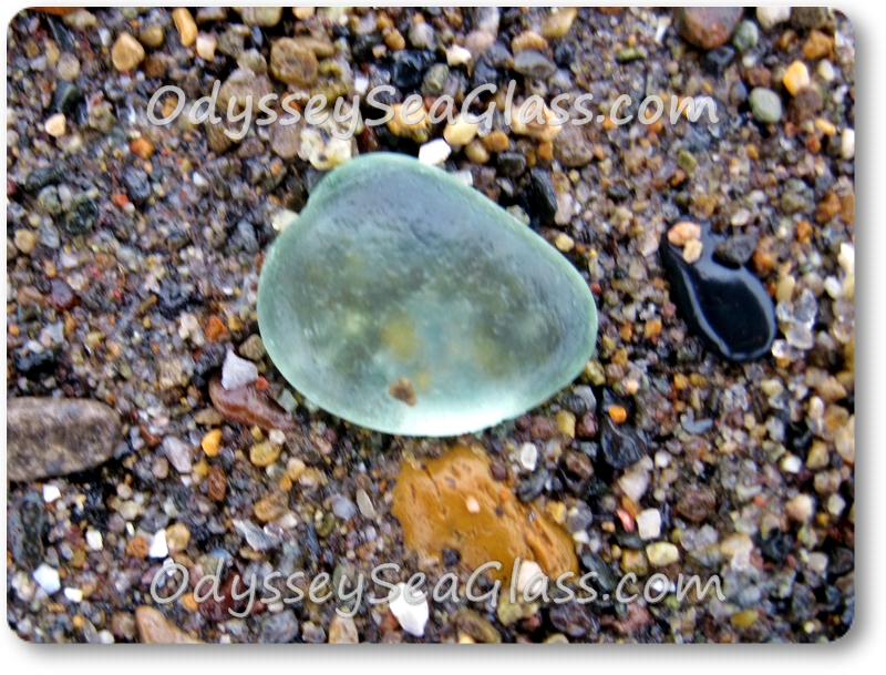 hunting sea glass on the beach sand