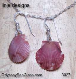 sea shell earrings pink Seashell Earrings