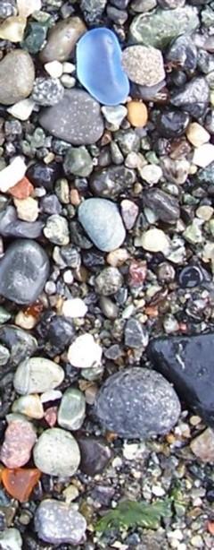Mixed Colors Sea Glass