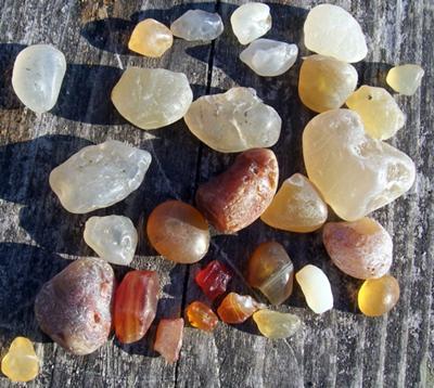 Agates Found Today
