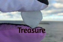 Beach Glass Treasure