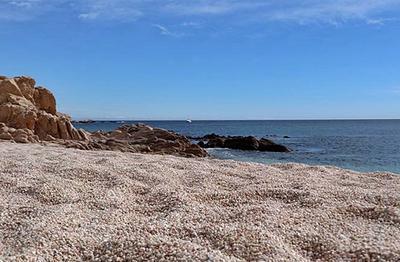 Chileno Beach, Cabo