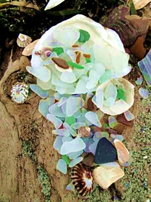 Alki Beach, Seattle - Sea Glass Catch