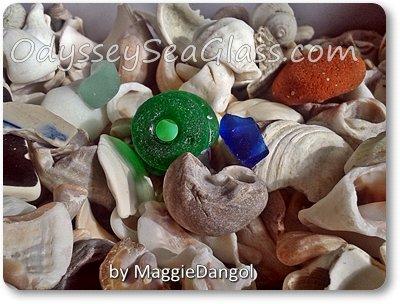 maggie_dangol_beach_finds