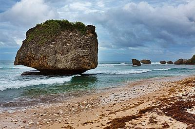 Barbados's Beautiful and Productive Beaches :)