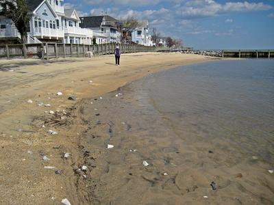 North Beach Maryland sea glass report