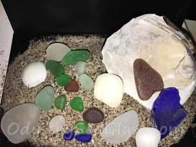 Sarah Gebhardt Ohio Beach Finds 2