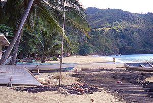 Tobago Beaches<br><br><small>(photo Wikipedia)</small>