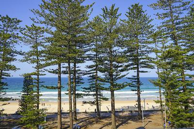 Manly Beach, Sydney, NSW Australia