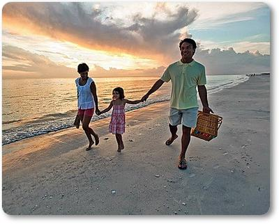 St Pete Beach, Florida Sea Glass Report