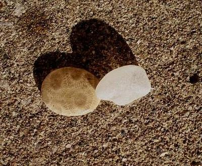 Two Favorite Finds! - July 2012 Sea Glass Photo Contest
